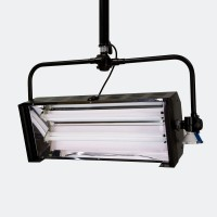 2x55W Fluorescent light
