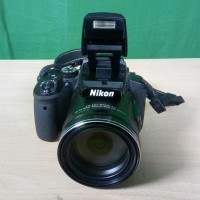 Nikon P900 camera with 83x fabulous long wildlife telephoto lens