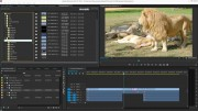 Marquis Integration for Adobe Premiere Pro CC and amp; Avid Interplay to Launch at NAB 2015